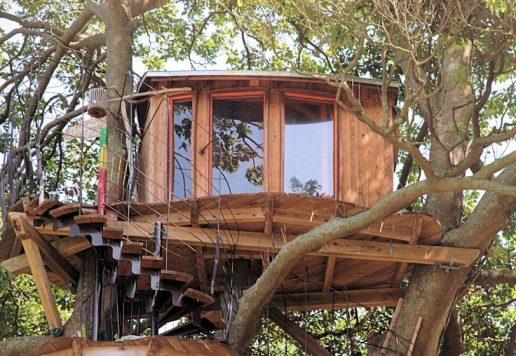 京丹後市久美浜町のツリーハウス