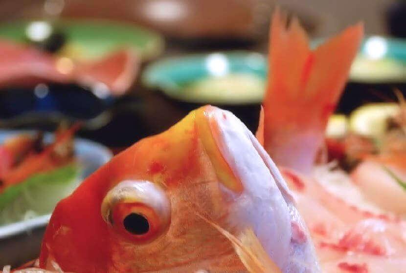 旬の魚介の舟盛料理