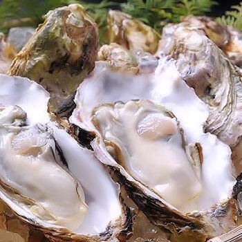 久美浜産牡蠣