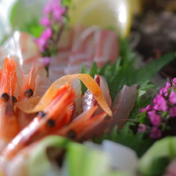 日本海や久美浜湾の魚介類の刺身